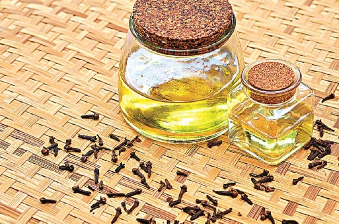 Hřebíčkový olej: Jak ho vyrobit a jeho účinky na zdraví
